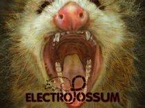 ElectroPossum