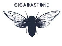 Cicadastone