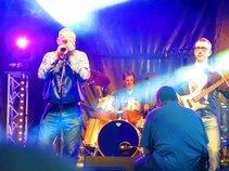 The Stray Blues Band