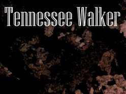 Image for Tennessee Walker