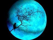 Blu Moonshine