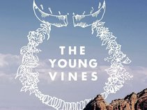The Young Vines
