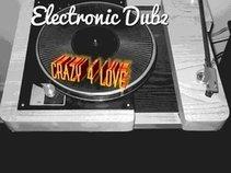 Electronic Dubz