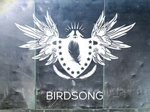 BIRDSONG ARTISTS Vol.1