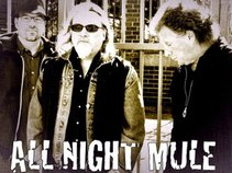 All Night Mule