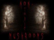 non-toxic mushrooms