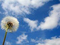 Dandelion Sky  (David Jon Peckinpaugh)
