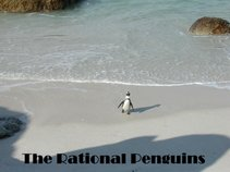 The Rational Penguins