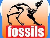 Fresh Fossils