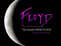 FLOYD the tribute