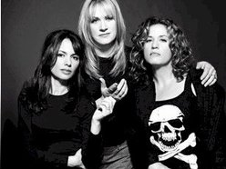 Image for The Bangles