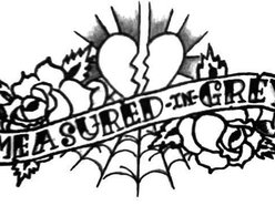 Image for Measured In Grey