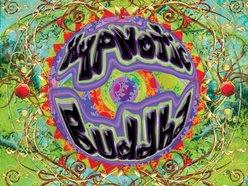 Image for Hypnotic Buddha