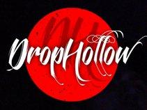 Drophollow