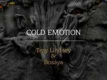 Troy Lindsey