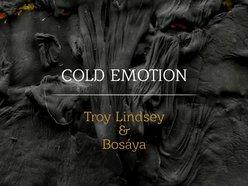 Image for Troy Lindsey