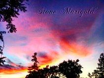 Stone Marigold