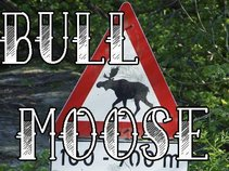Bull Moose Party