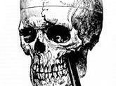 Phineas Gage Experiment (Paul Olstad Project)