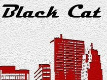 Black Cat Mambo