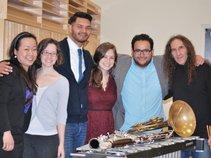 The Eldad Tarmu Chamber Ensemble