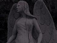 Haunted Angel