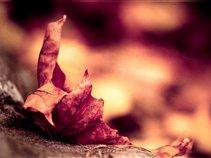 Autumn's Envy