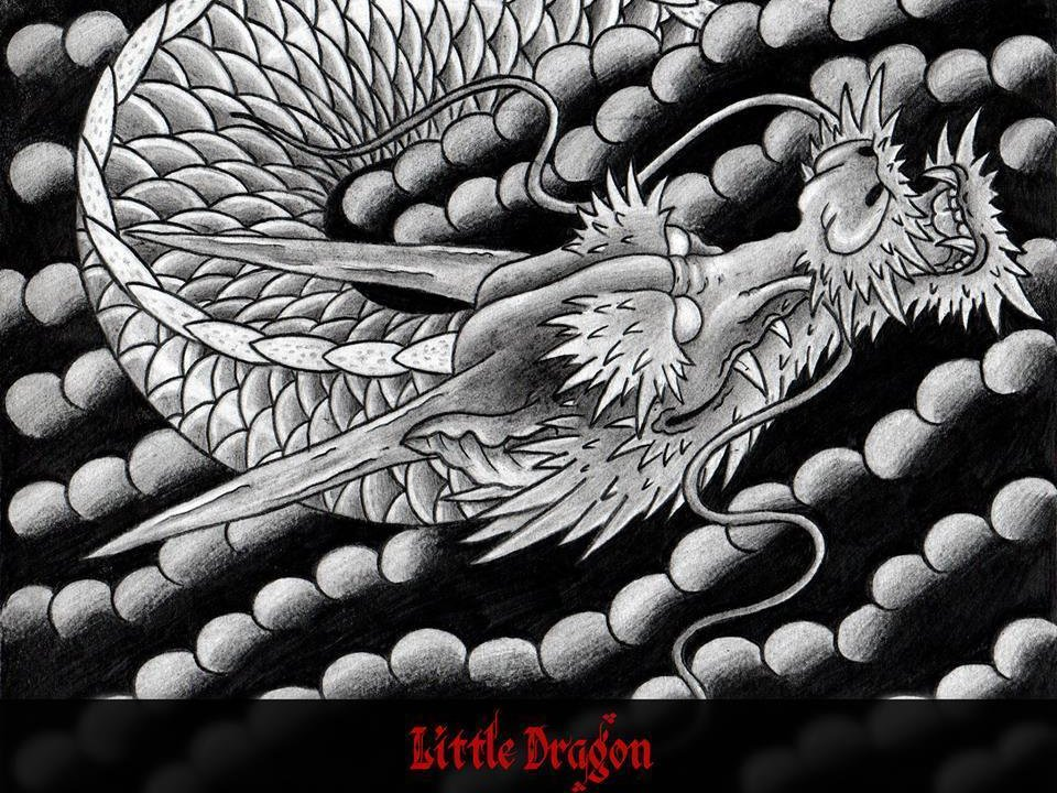 Image for little dragon
