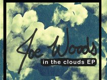 Joe Woods