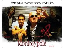 Monkeypole