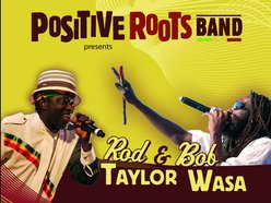 Image for Positive roots band