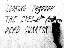 Looking Through The Eyes of A Dead Curator