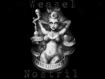 Weasel Nostril