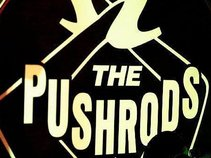 the PushRods