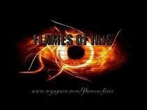 FLAMES OF IRIS