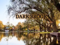 Dark Brook