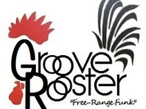 Groove Rooster