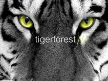 Tigerforest
