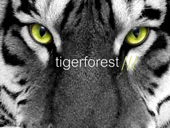 Image for Tigerforest