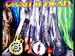 Image for The Grass is Dead