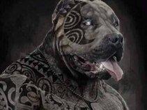 Tattooed The Dog