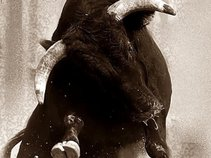 Bull Run Union