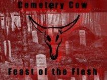 Cemetery Cow