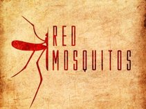 Red Mosquitos (Pearl Jam Tribute Band)