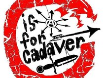 C is for Cadaver