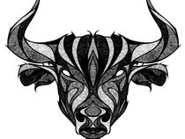Taurus Authority