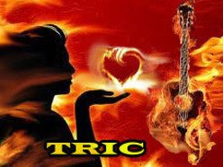 Image for Tric