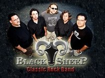 Blacksheep Tallahassee