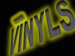 Image for The Vinyls