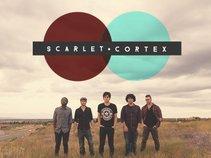 Scarlet Cortex